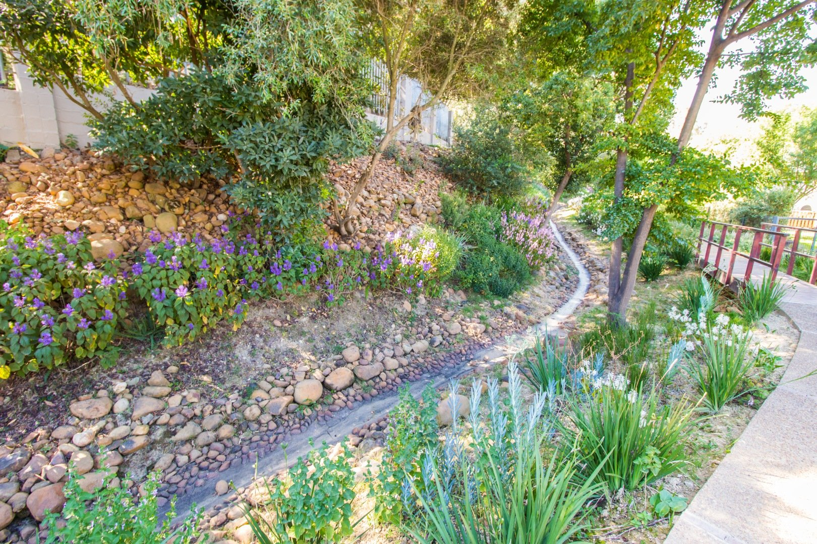paarl home to buy
